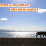 与謝野町のペット葬儀・ペット火葬はペットセレモニー舞鶴にお任せください。